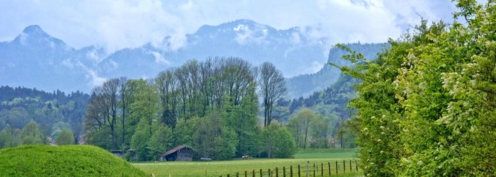 bergen am chiemsee